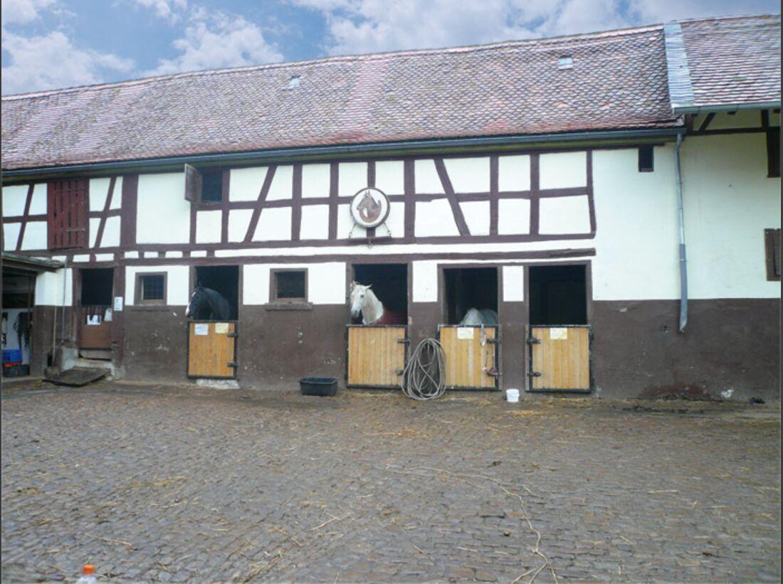CAV 0109 Reitschultest Niederursel 2 (jpg)