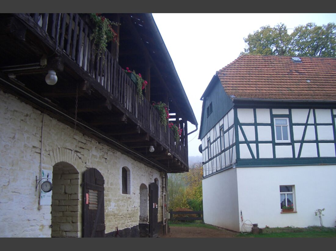 CAV-0113-Reitschultest-Harz-Gut-Drebsdorf-4 (jpg)