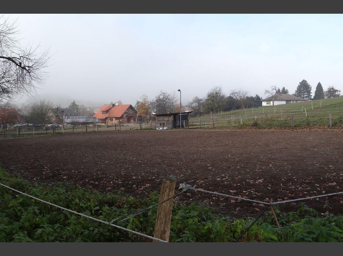 CAV-0212-Reitschultest-Hessen-Indian-Sky-Ranch-Reitplatz (jpg)