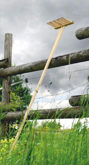 CAV 07_2010_10 Fragen_Pferdequälen_2