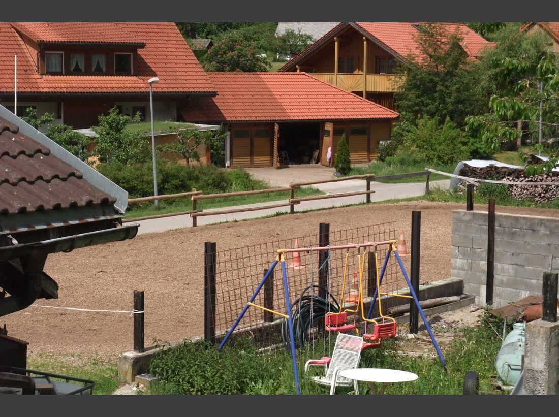 CAV_0811_Reitschultest_Heike-Klein_4 (jpg)