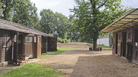 CAV 0909 Reitschultest 7 (jpg)