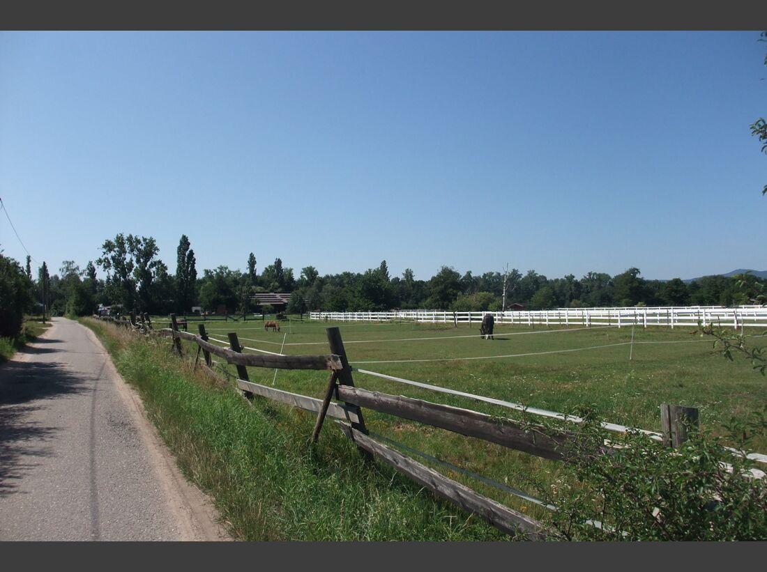 CAV 1011_Reitschultest Pfalz_RVN-Pfalzmuehle-01 (jpg)