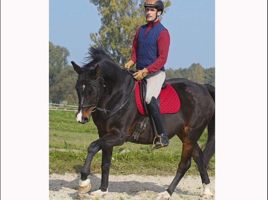 CAV 12_2010-Pferd-locker-reiten_Schoenewald_05 (jpg)