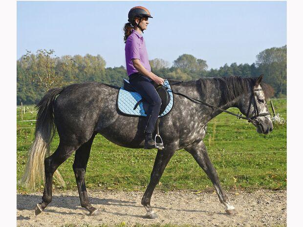 CAV 12_2010-Pferd-locker-reiten_Schoenewald_09 (jpg)