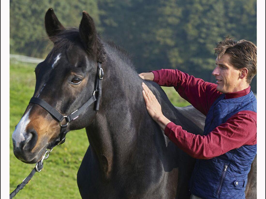 CAV 12_2010-Pferd-locker-reiten_Schoenewald_13 (jpg)