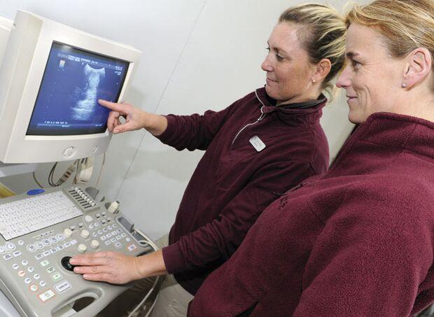 CAV_12_2010 Ultraschall Sonographie_17 (jpg)