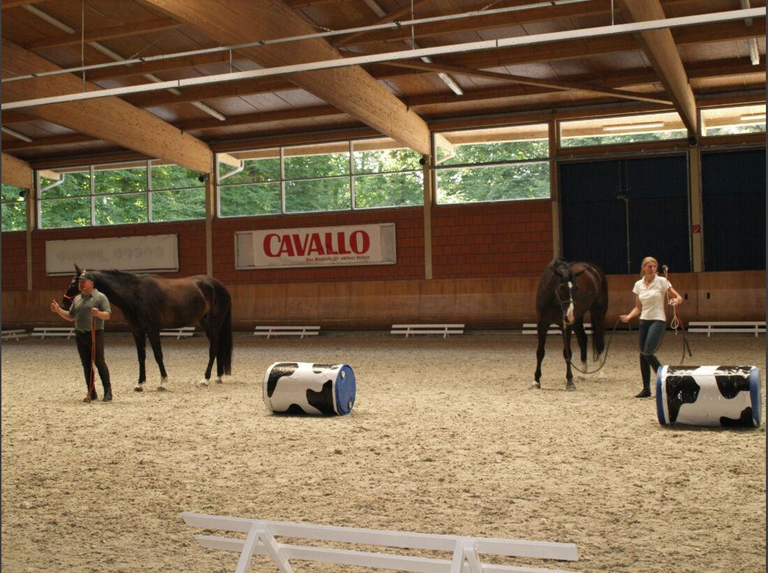 CAV Academy 2015 Ralf Heil Andrea Bethge