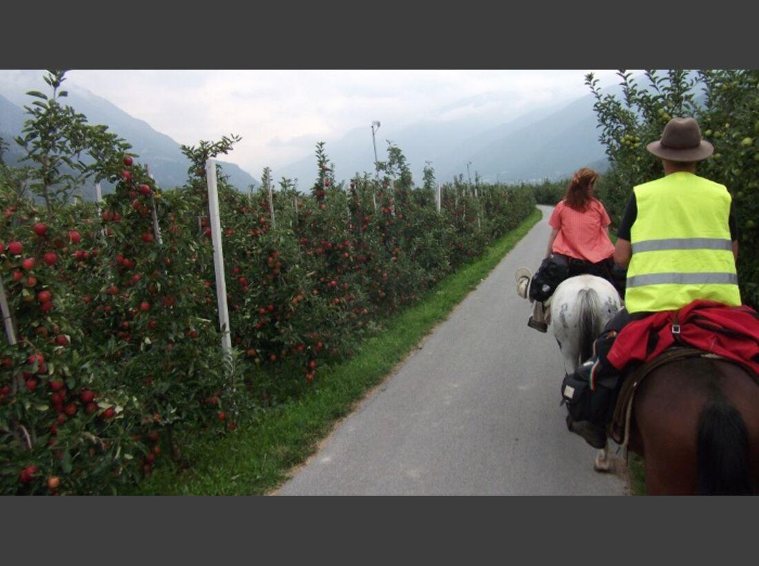 CAV Alpenritt 2010 Wanderritt Andreas Funke 06