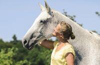 CAV Alte Pferde Teaser