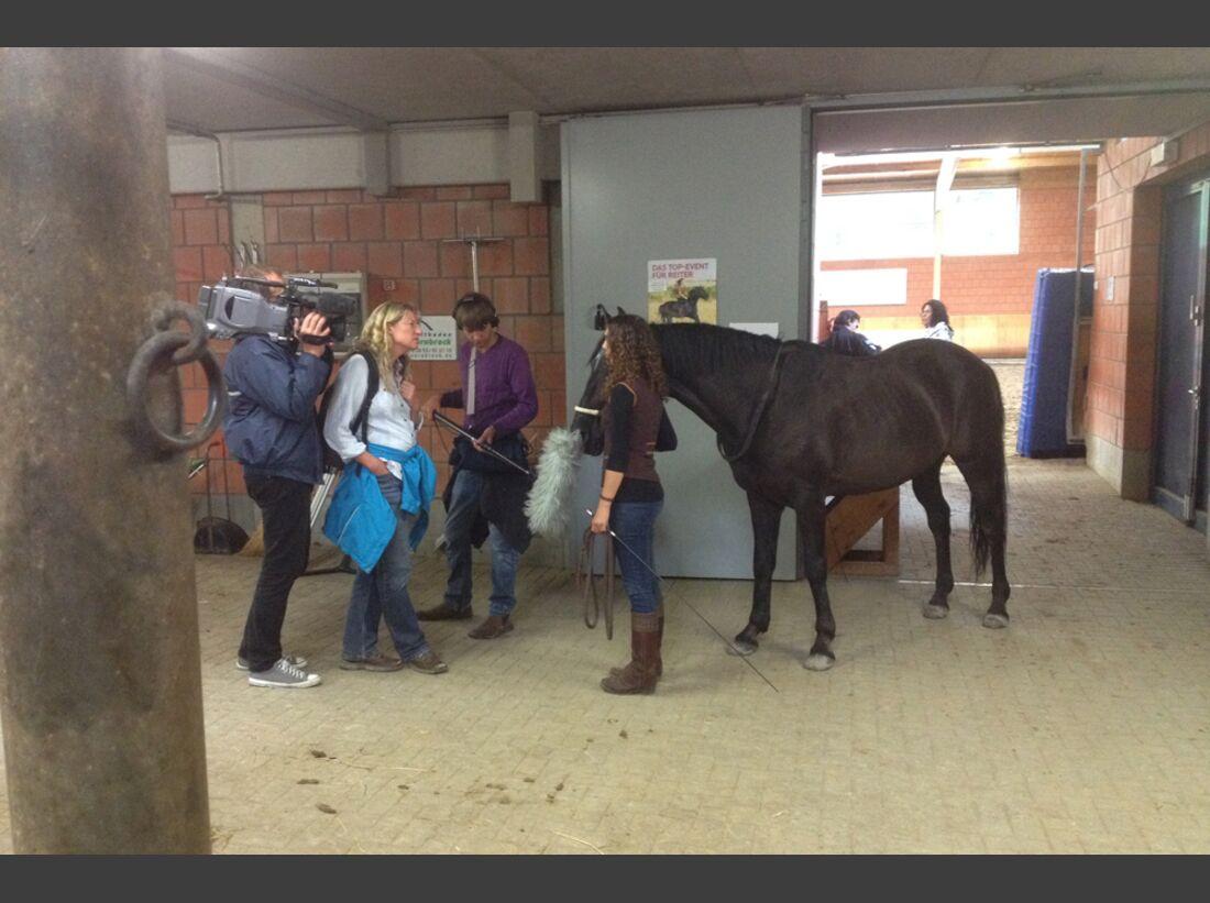 CAV-Cavallo-Academy-2014-2 (jpg)