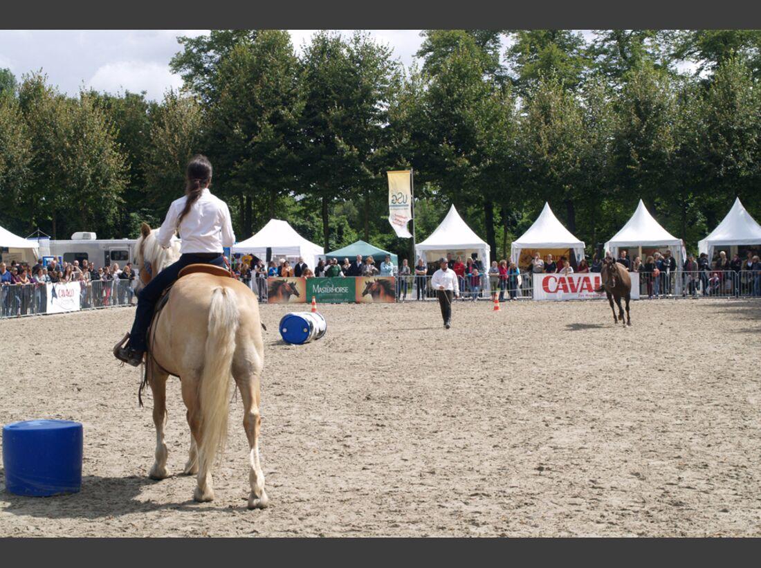 CAV-Cavallo-Academy-2014-22 (jpg)