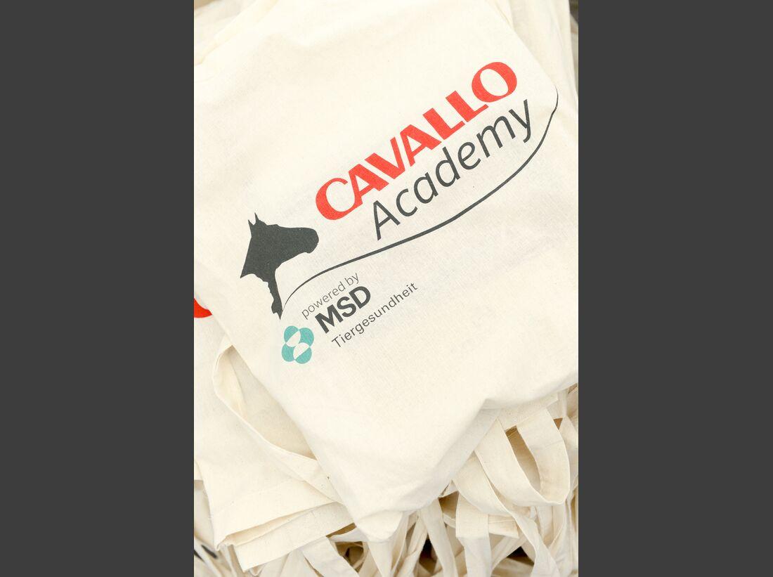 CAV-Cavallo-Academy-2014-50 (jpg)