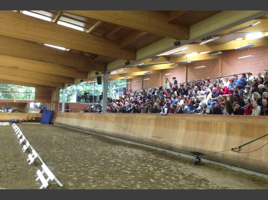 CAV-Cavallo-Academy-2014-7 (JPG)