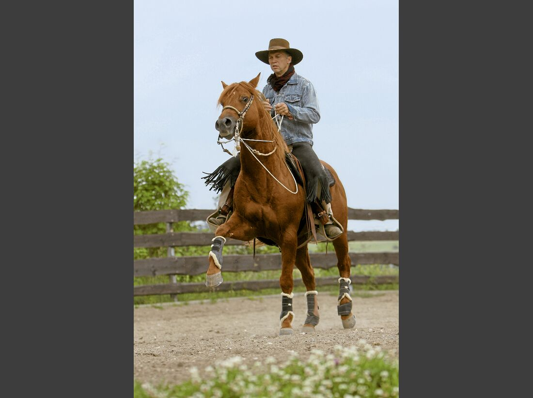 CAV Ernst-Peter Frey Sugarman Horsemanship 06