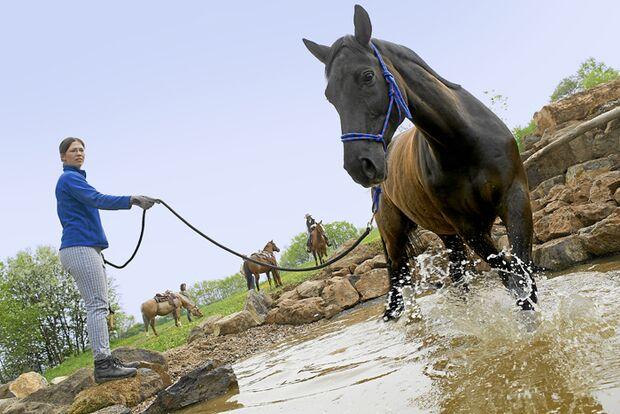 CAV-Extreme-Trail-Park-Wasserteich