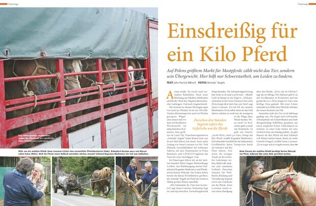 CAV_Fairnessaward_2010_Pferdefreund_01 (jpg)