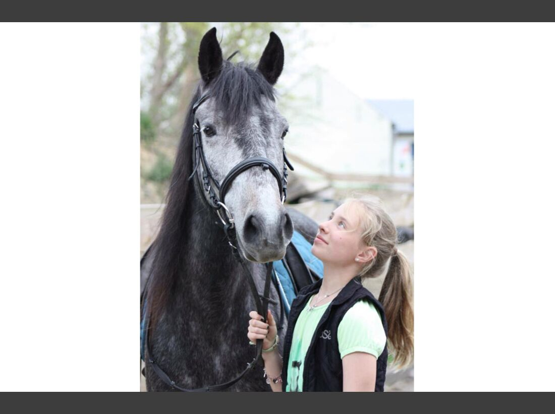 CAV Fan-Pferde I Ivy - Olivia Reschke