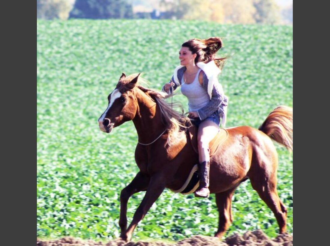 CAV-Fan-Pferde-Leseraktion-2013-Nihal (jpg)