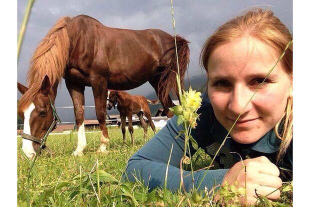 CAV Fan-Pferde Viola Birgit