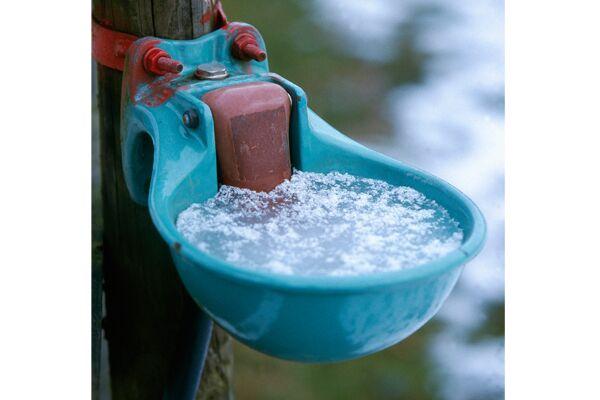 CAV Frostschutz für Selbsttränken 2