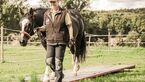 CAV Horse Agility alte Pferde Wippe