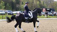 CAV Horses Dreams Matthias Rath Totilas