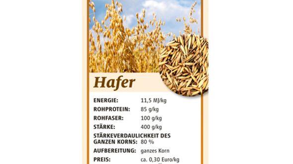 CAV Kraftfutter Hafer Mais Gerste Müsli - Hafer