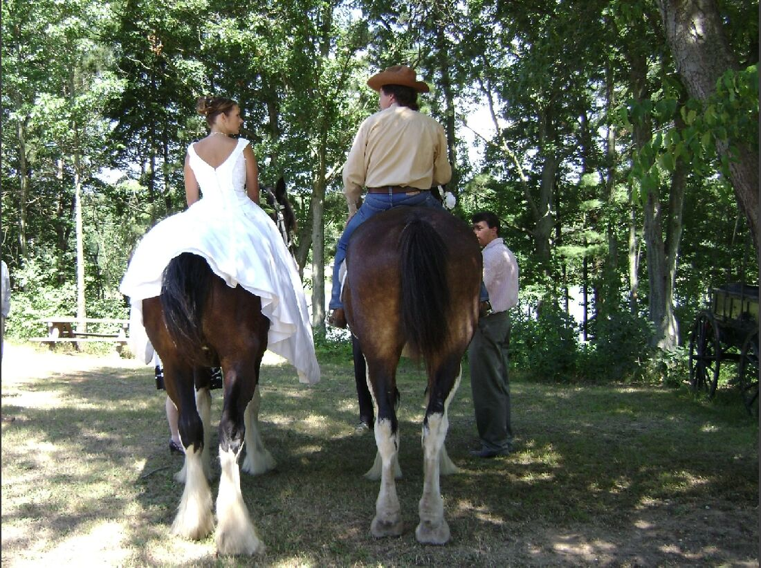CAV_MS Clydesdales_A Clydesdale Wedding (jpg)