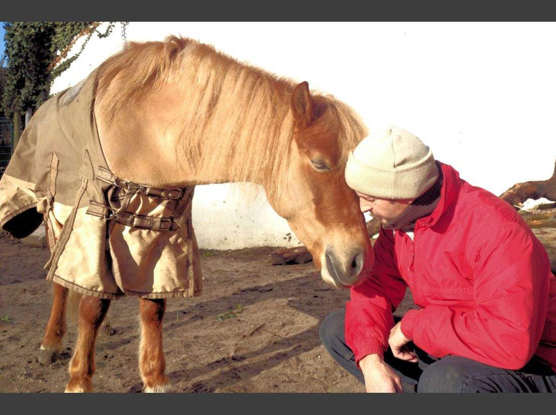 CAV Maenner lieben Pferde Katja Geiss