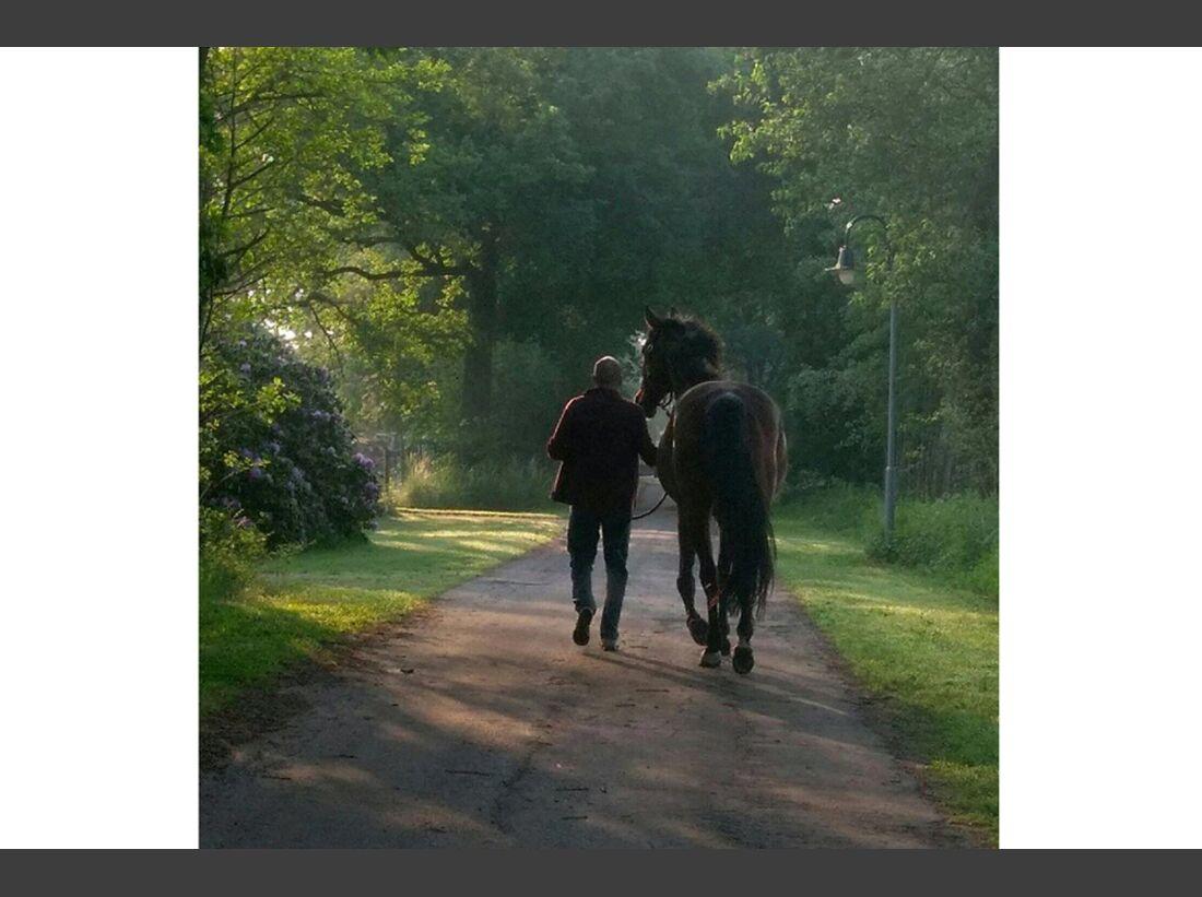 CAV Männer lieben Pferde Ralph Timm