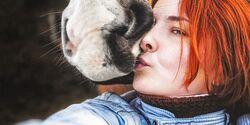 CAV Pferd Reiterin Knutsch Kuss schmusen