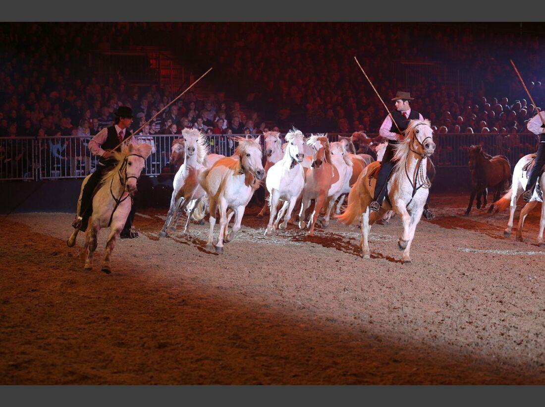 CAV Pferd und Jagd 17