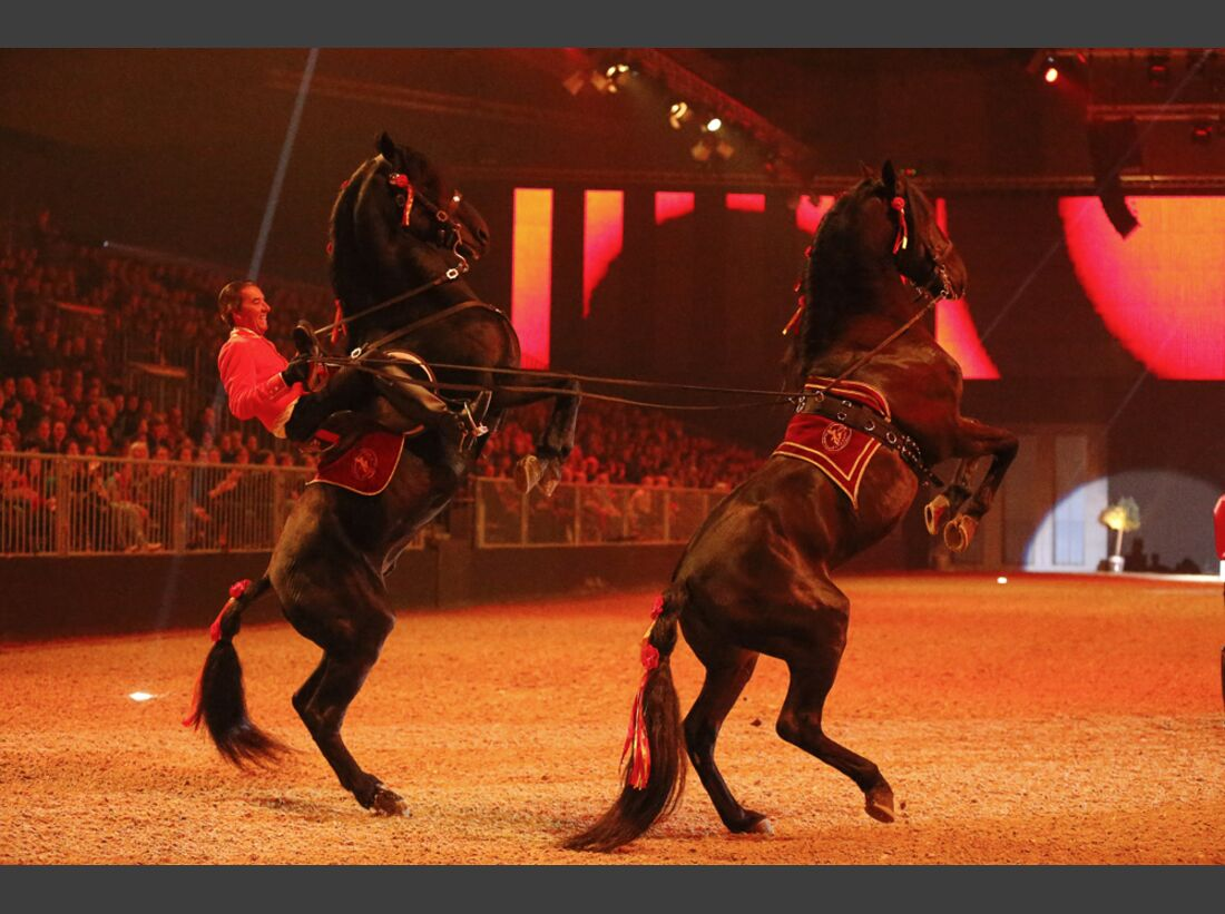 CAV-Pferd-und-Jagd-2013-40 (jpg)