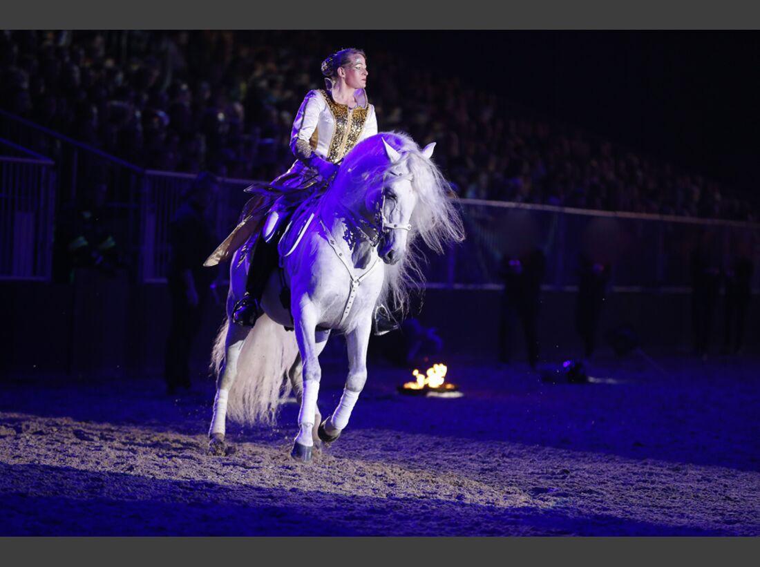 CAV-Pferd-und-Jagd-2013-51 (jpg)