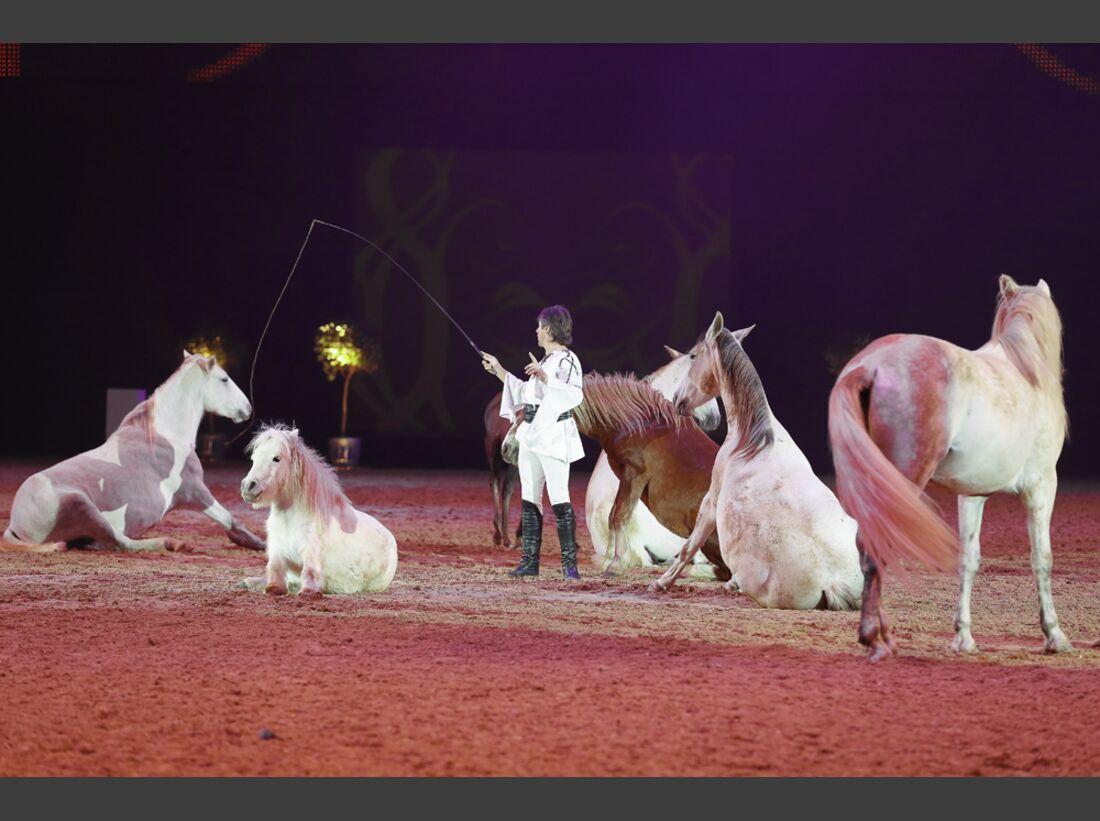 CAV-Pferd-und-Jagd-2013-90 (jpg)