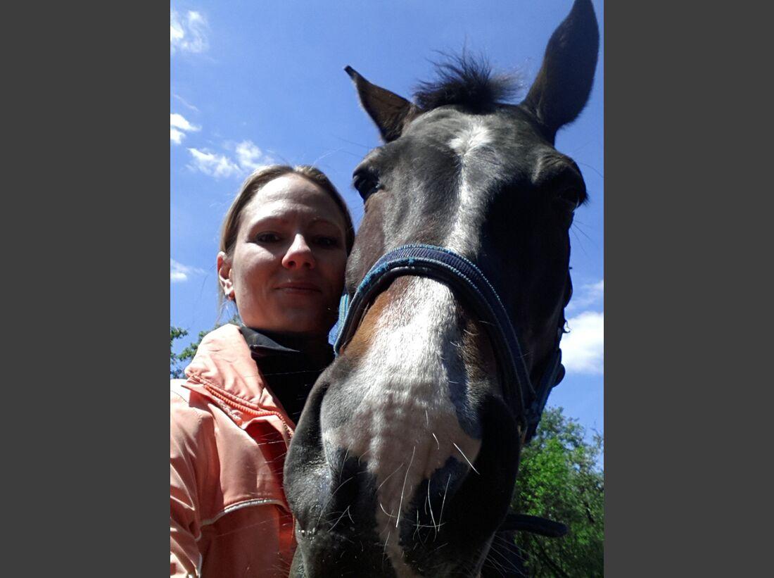 CAV-Pferde-Selfie-Leseraktion-2014-Anja-Winter (jpg)
