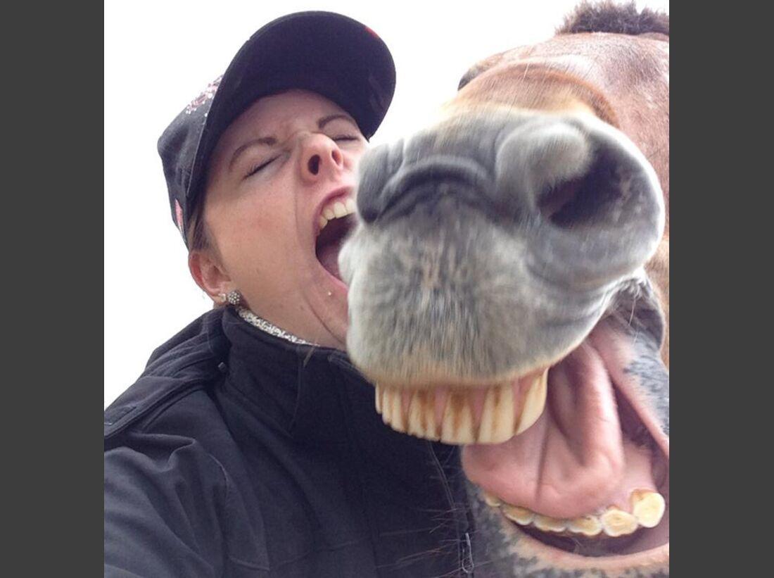 CAV-Pferde-Selfie-Leseraktion-2014-Dominique-Berger (jpg)