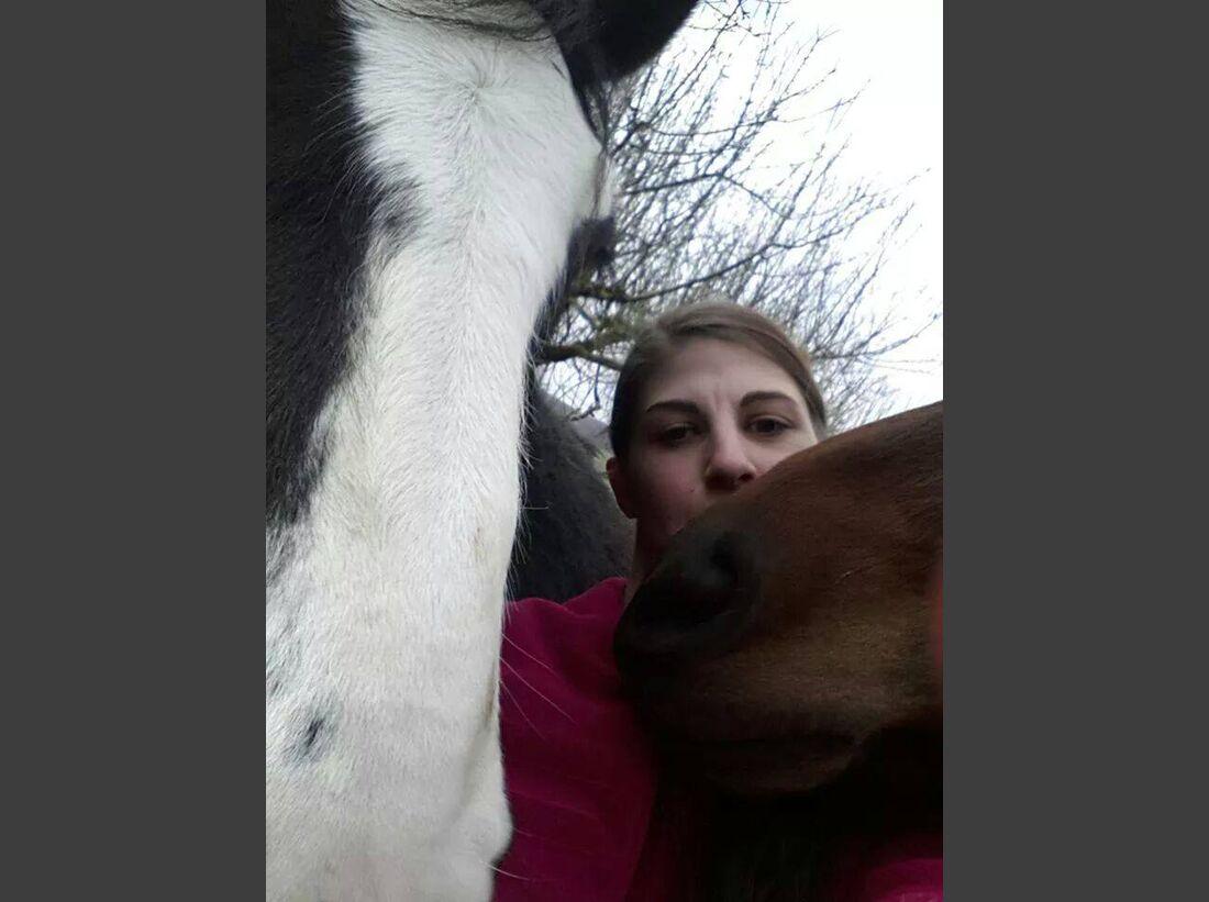 CAV-Pferde-Selfie-Leseraktion-2014-Julia-Gabriel (jpg)