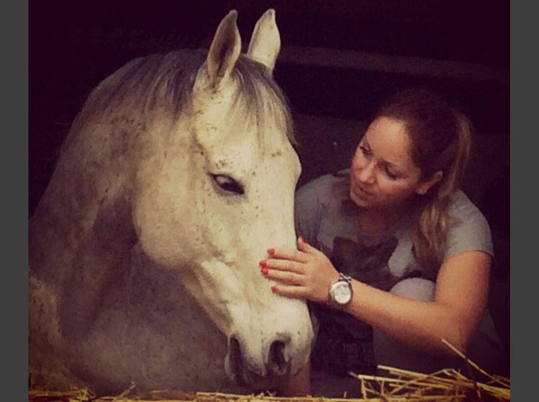 CAV-Pferde-Selfie-Leseraktion-2014-Natascha-Roesch (JPG)