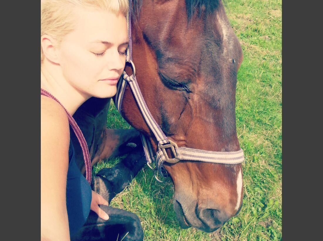 CAV-Pferde-Selfie-Leseraktion-2014-Nele-Huelk (jpg)