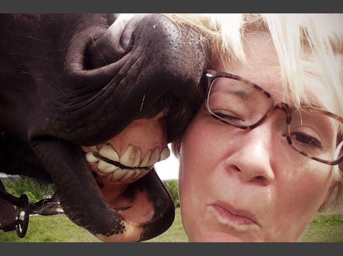 CAV-Pferde-Selfie-Leseraktion-2014-Sandra-Joern (JPG)