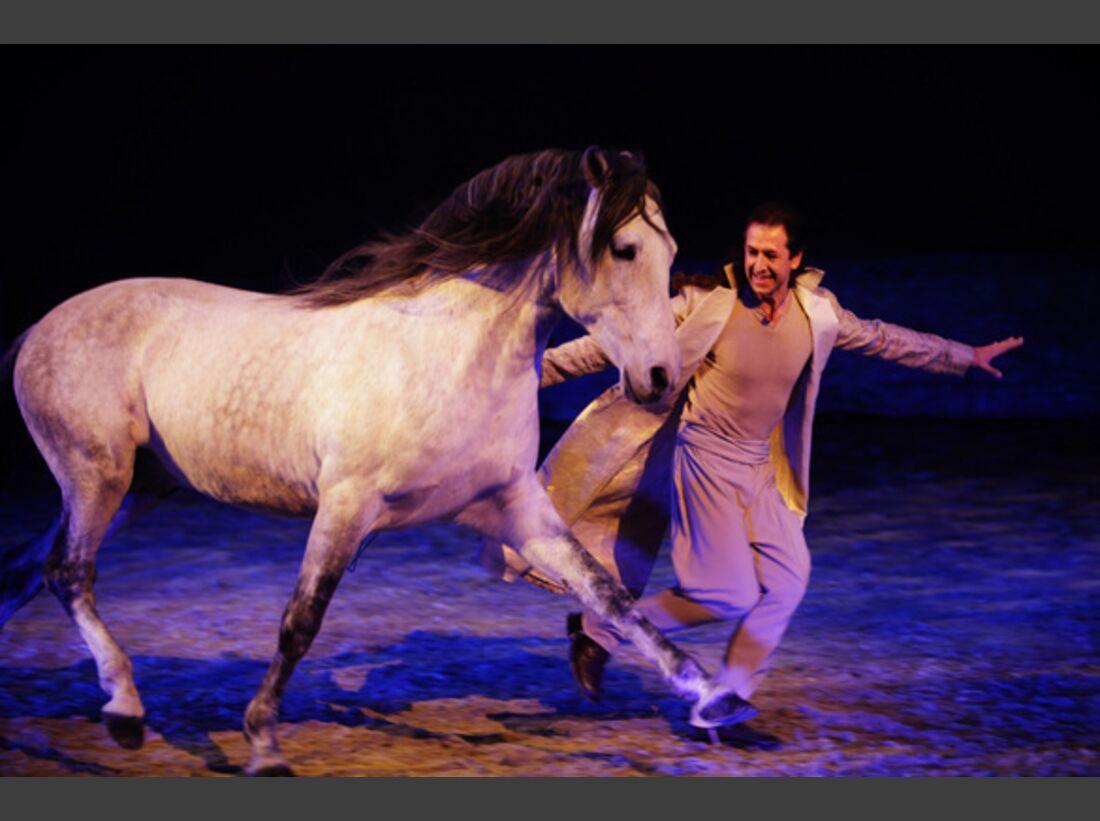 CAV Pferde-Show André Heller Magnifico 08