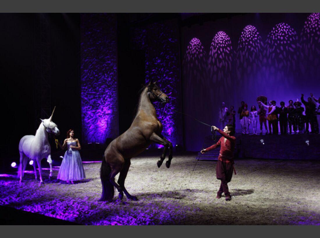 CAV Pferde-Show André Heller Magnifico 25