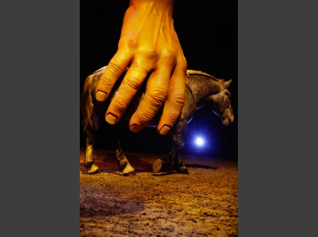 CAV Pferde-Show André Heller Magnifico 26