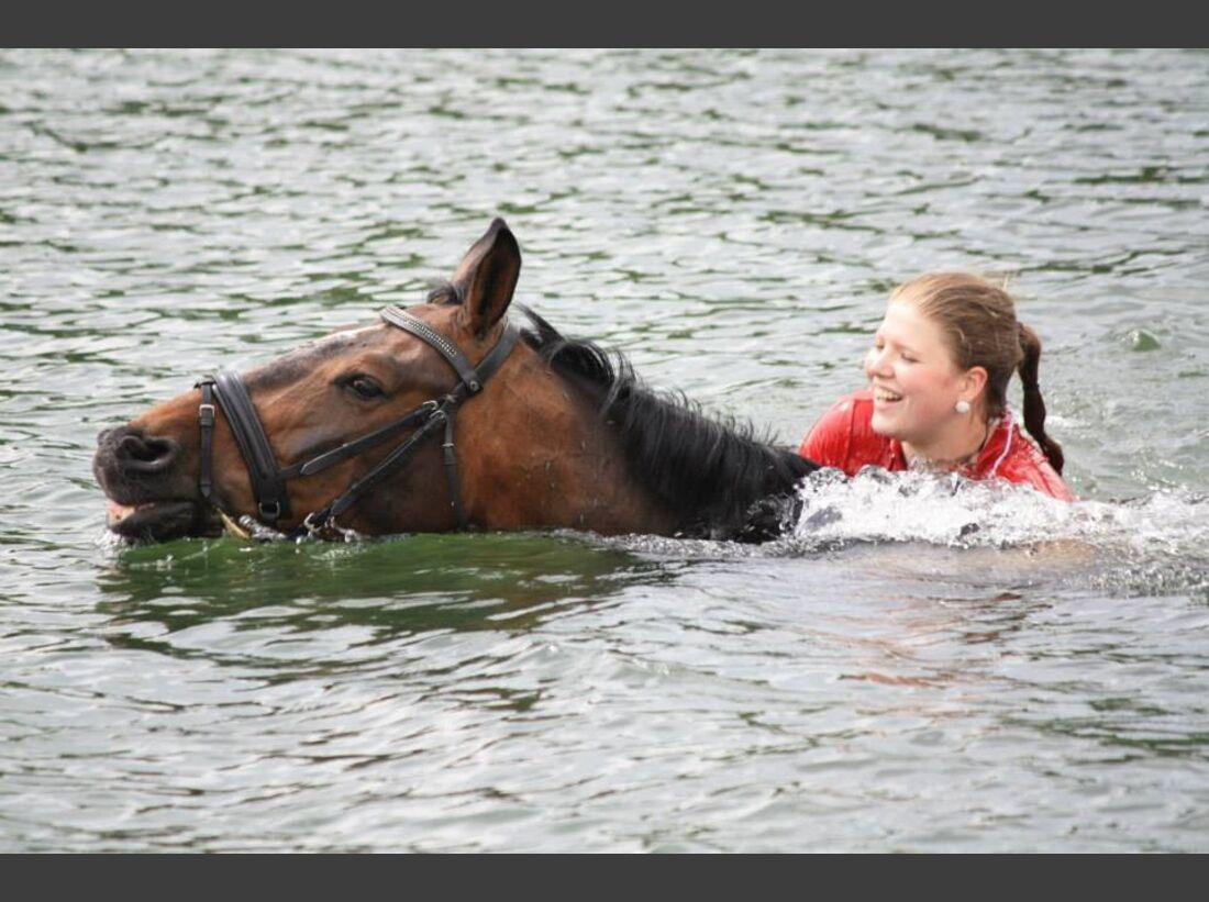 CAV-Pferde-beim-schwimmen-Janine-Deppe (jpeg)