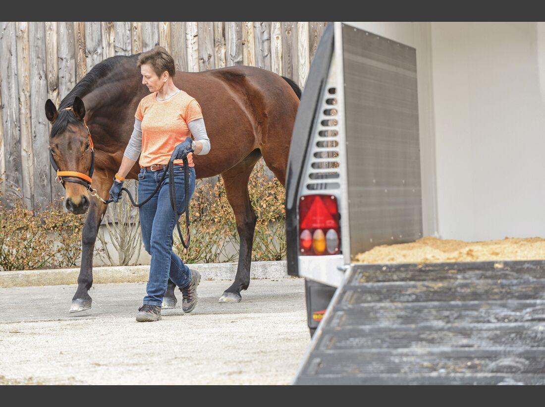 CAV Pferdehänger Pferd verladen 8