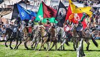 CAV Pferdeshow Horses Heros Hero Merkel Team