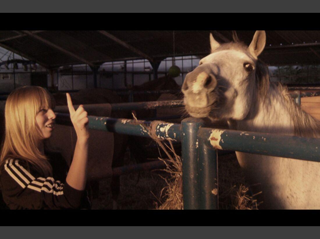 CAV Pony Leserfotos 14