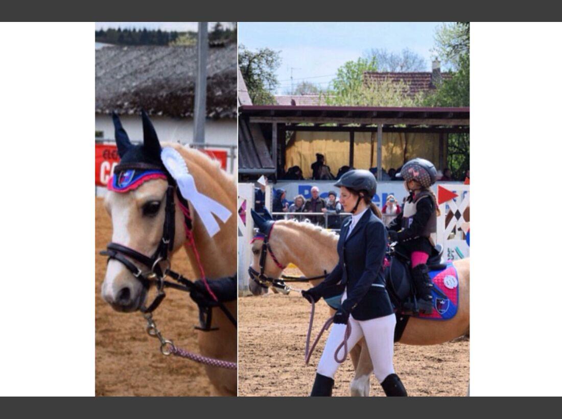 CAV Pony Ramona Schwab